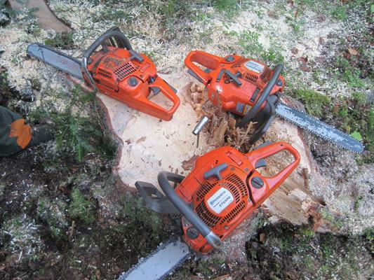 Unser Holzfäller-Sägen