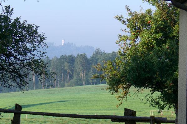 Blick zum Aussichtsturm Altenberg