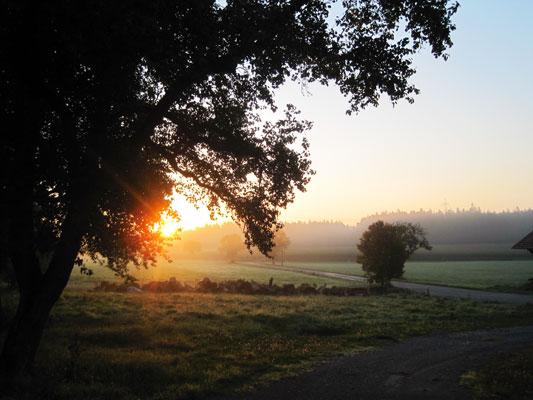 Landschaft bei Sonnenaufgang