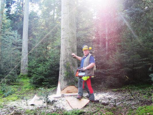 Viktor Engel beim Holzfällen