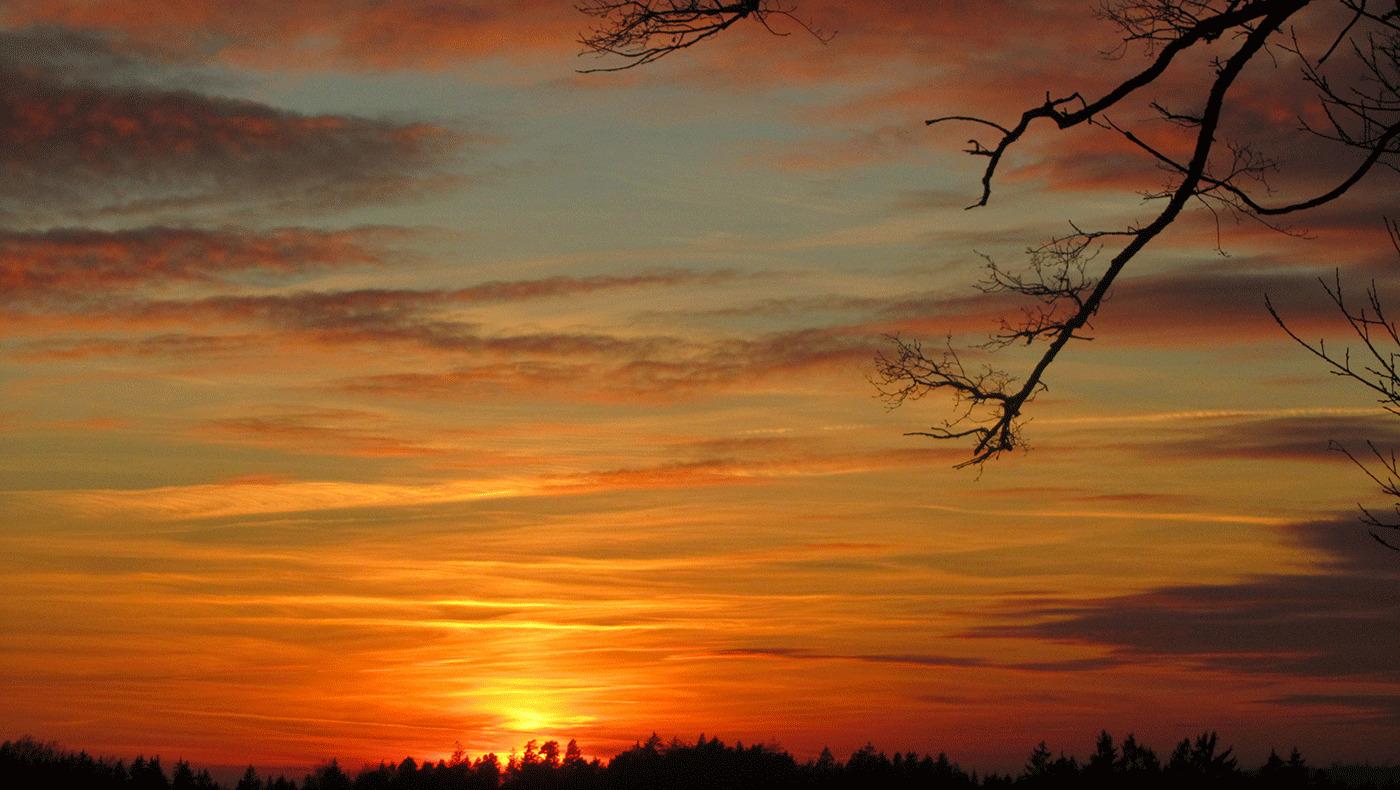 Naturhof Engel Sonnenuntergang
